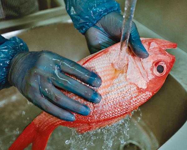 Fisch wird gewaschen