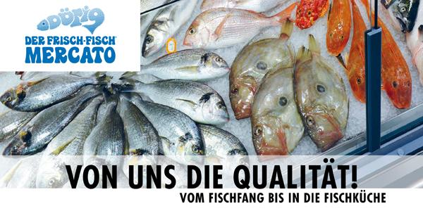 Fisch Einkauf Prospekt