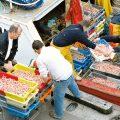 Fischfang Anlandung