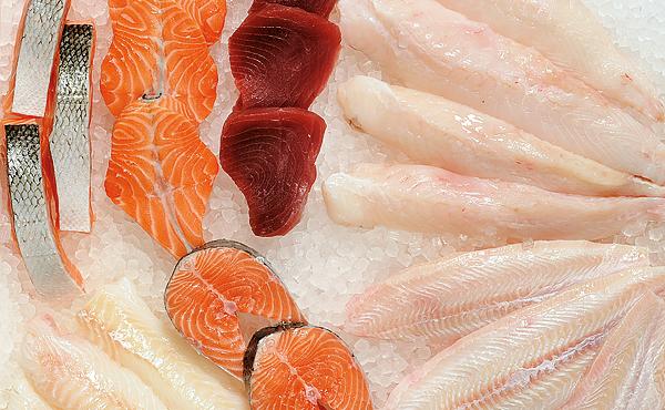 Fisch-Engros Detailhandel