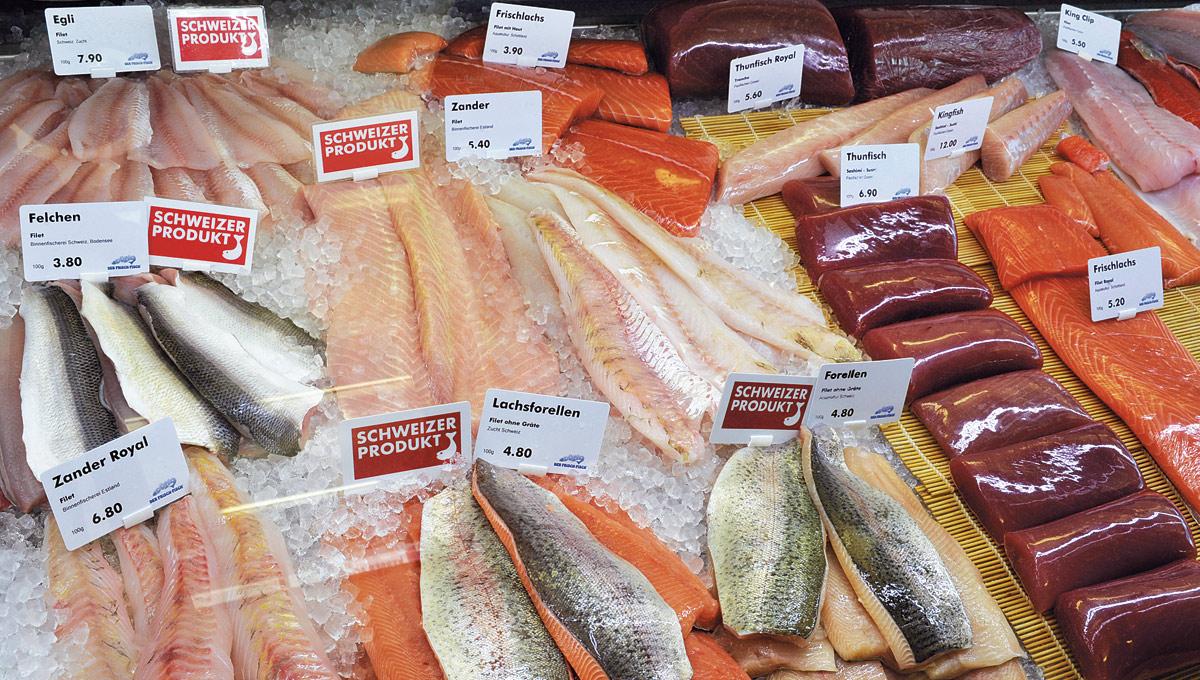 Fisch-Einkauf Filets