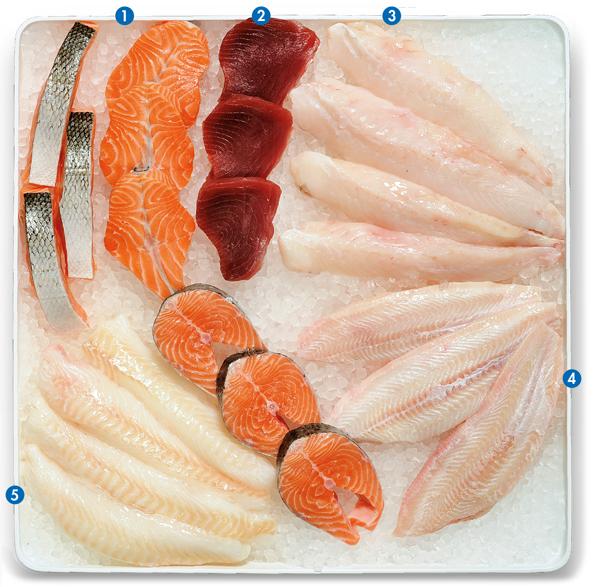 Vitrine Fischfilets