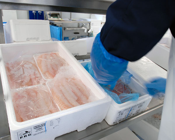 Fischfilet verpacken